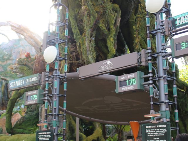 Attraction Focus: Avatar Flight of Passage