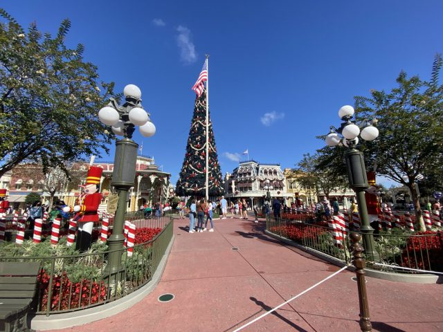 What Do Disney Fans Do In Summer? They Think About Christmas!