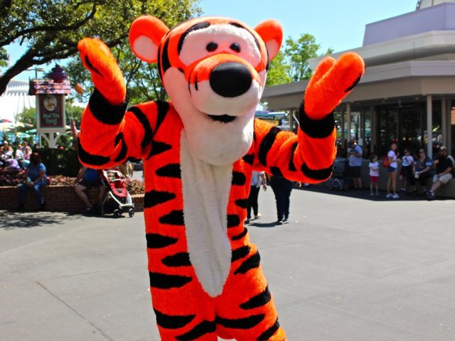 6 Steps To Planning A Disney Vacation
