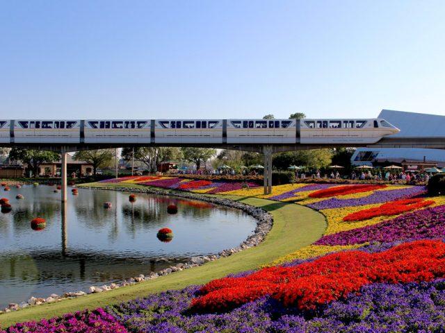 Virtually Visit Disney This Month